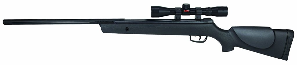 best pellet rifle for the money Review