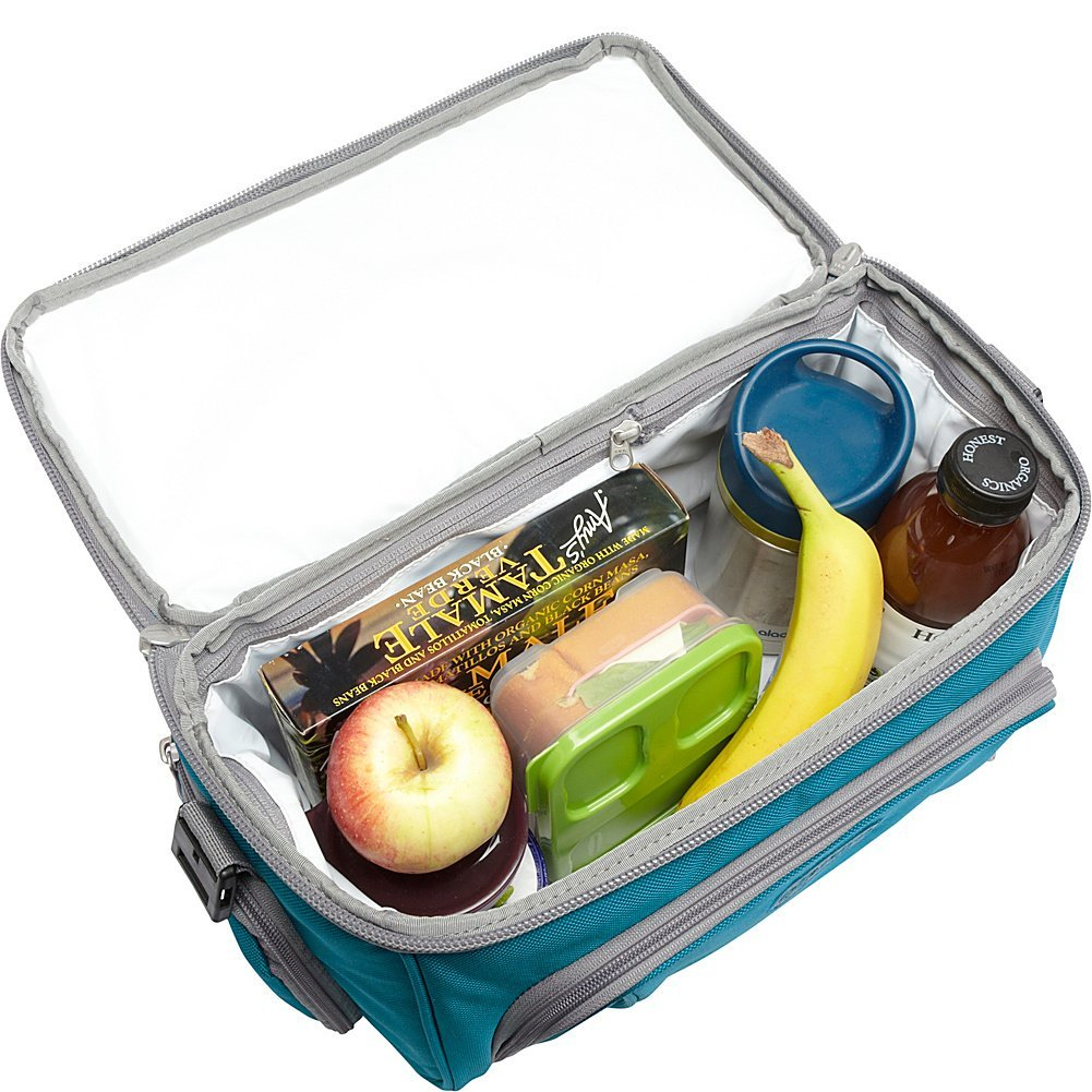 best coolers for the beach