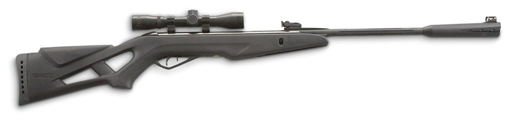Best Air Rifle for the Money